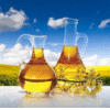 LIBERTYOIL LTD