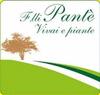 VIVAI E PIANTE DEI F.LLI PANTE' FRANCESCO, SALVATORE E STEFANO M