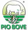 SOCIETÀ AGRICOLA PIO BOVE S. S.