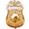 CACIQUE SECURITE PROFESSIONNELLE