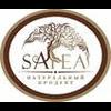 SATEA LLC