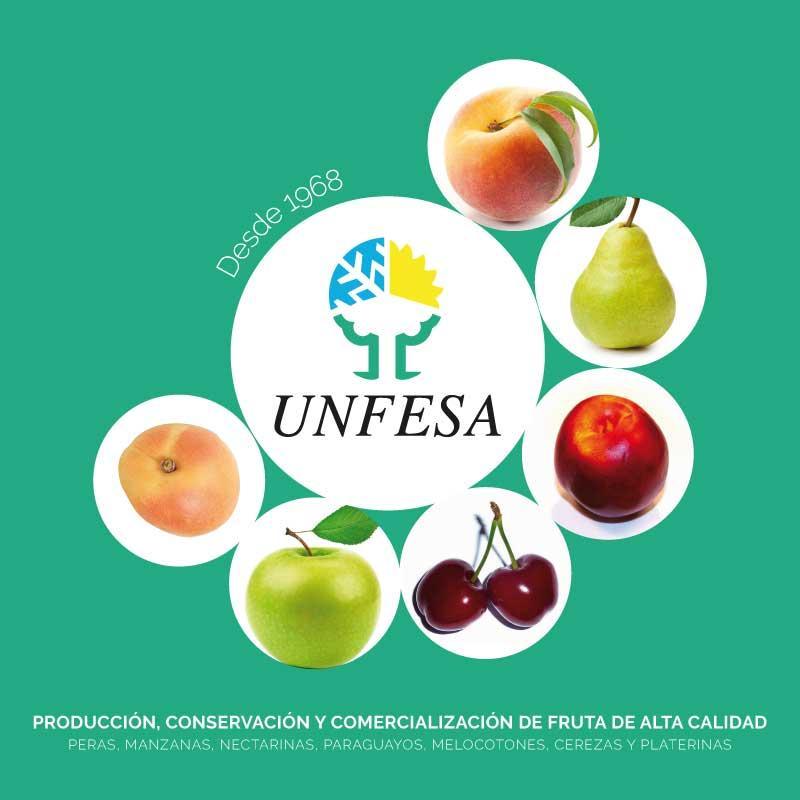 PRODUCCIÓN, CONSERVACIÓN Y COMERCIALIZACIÓN DE FRUTA
