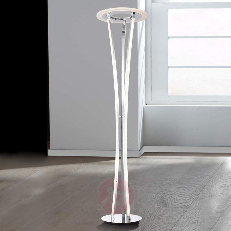 Seattle - beautifully-shaped LED floor lamp - Floor Lamps