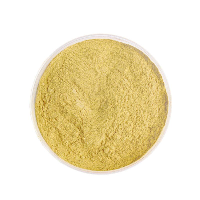Turmeric Extract - Plant Extracts