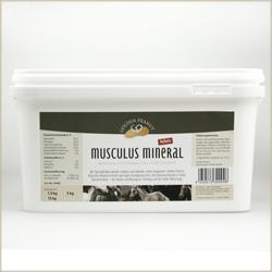 Musculus Mineral - Golden Peanut Produktlinie