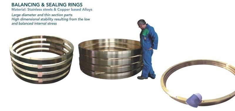 Balancing & sealing ring - Pumps - vertical pump
