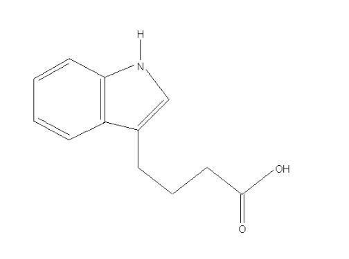 fitoreguladores - auxinas, giberelinas, citoquininas, etc.