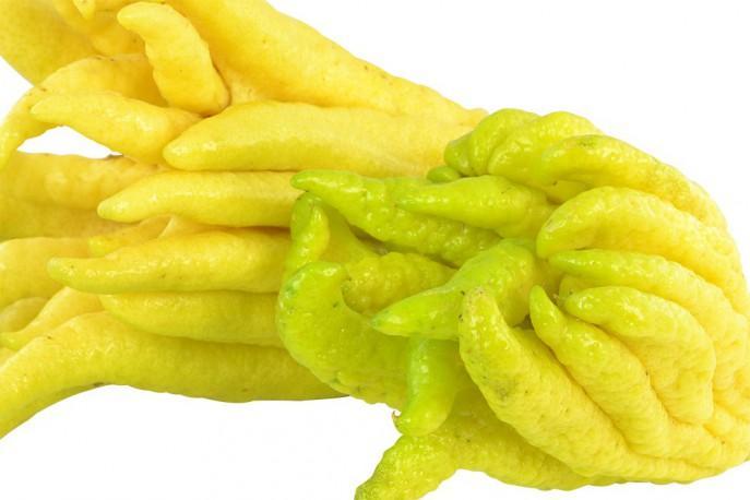 Main de Bouddha - Légumes découvertes