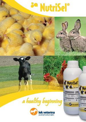 NutriSel - Vitamin supplement to overcome stress situations