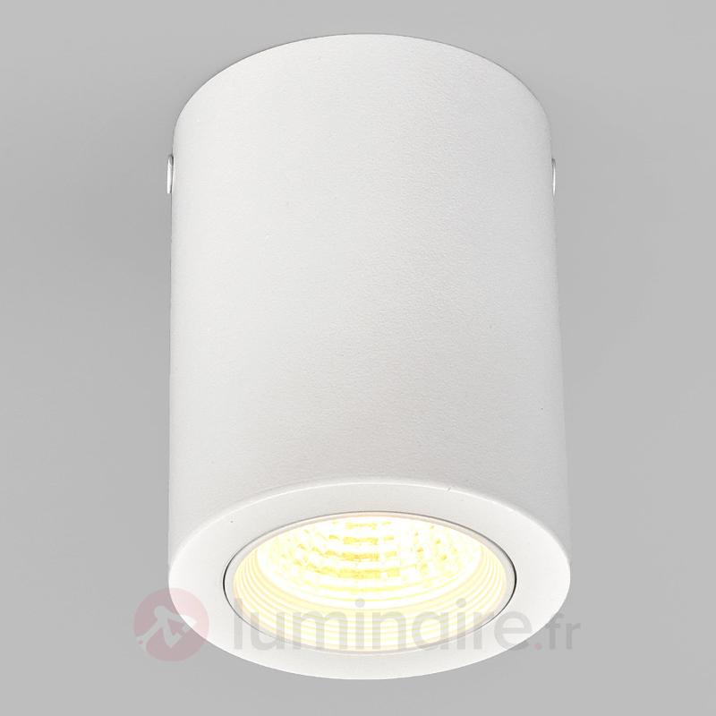 Plafonnier en saillie Carlito avec LED - Tous les plafonniers