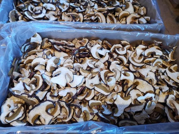 蘑菇 - 来自西伯利亚的新鲜、干燥、冷冻蘑菇