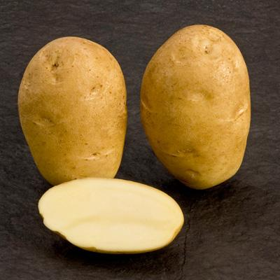 Potatoes - Yellow skin - FONTANE