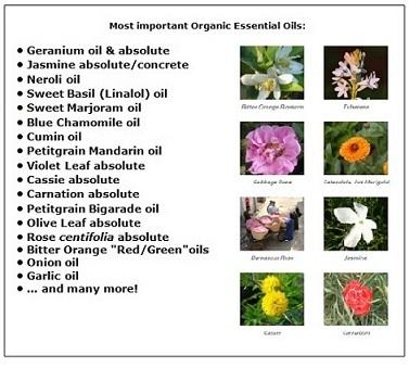 Essential Oils - essential oils, concretes, absolutes, extracts, hydrolates, botanical waxes