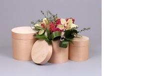 Boxes - Veneer gift boxes
