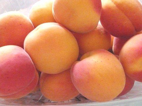 Albaricoque - Albaricoque naranja y rojo