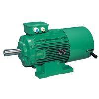 Freno de corriente continua Patay para elevación de 65... - FCPL