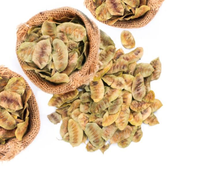 SENNA PODS - A herb used widely in traditional medicines & modern drugs industry