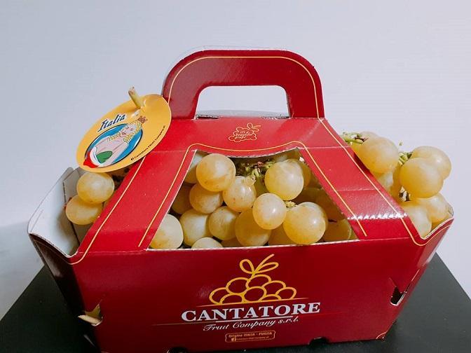 ITALIA GRAPE   - CESTINO DA 2,5kg