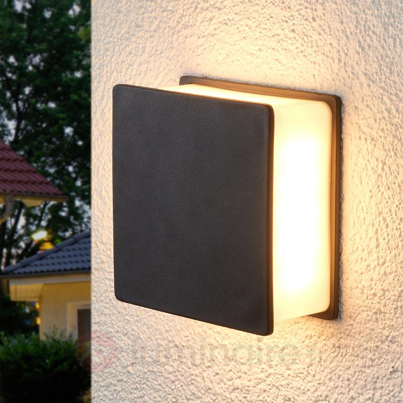 Applique à lumière LED indirecte Isida extérieur - Appliques d'extérieur LED