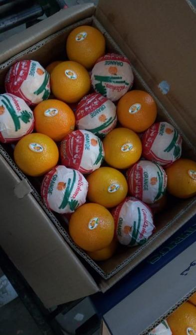 Valencia Orange - Organic