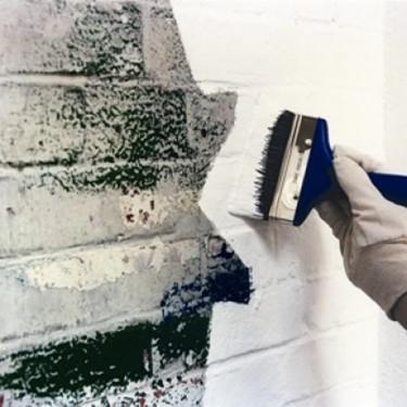 Peinture murale intérieure - Peinture Spécial Mur 10 Litres Brosse de 13 cm Rouleau de 23