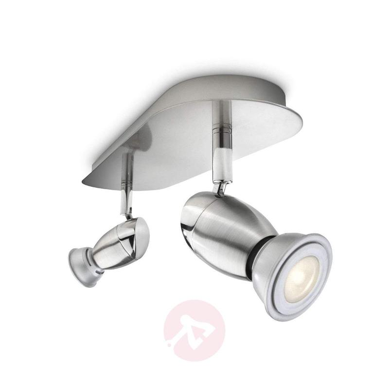 Olivia LED Ceiling Light Two Bulbs - Ceiling Lights