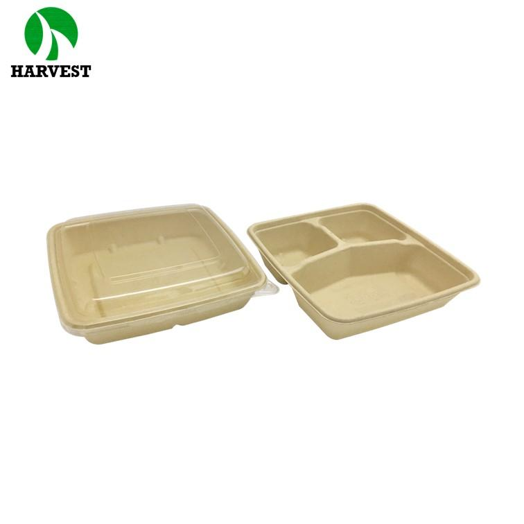 Bio Disposable Bento Box Lunch Bamboo Paper Takeaway Food Container - Green Collection