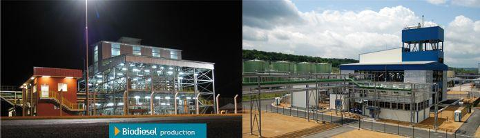 Biodiesel production EPC - null
