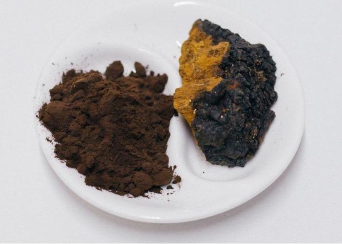Extrait de Chaga - ingrédient fonctionnel pour l'industrie alimentaire, pharmaceutique et cosmétiqu
