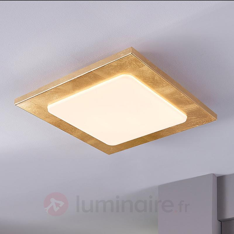 Plafonnier LED Martina à rebords dorés - Plafonniers LED