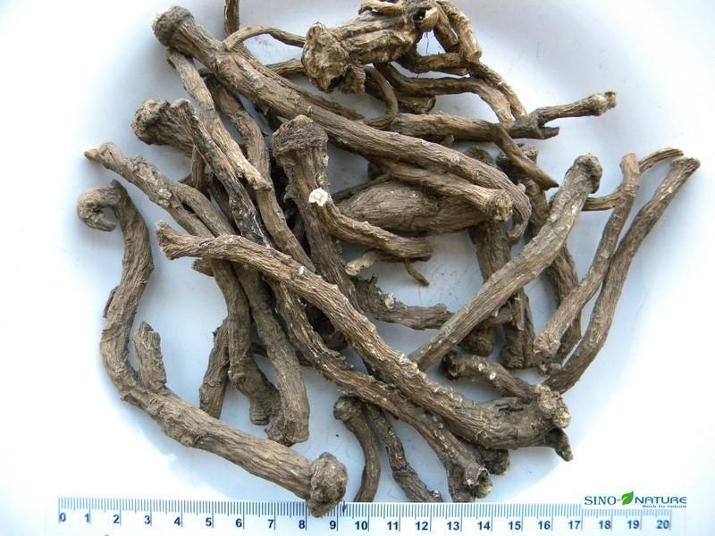 Dandelion root - Coarse cut