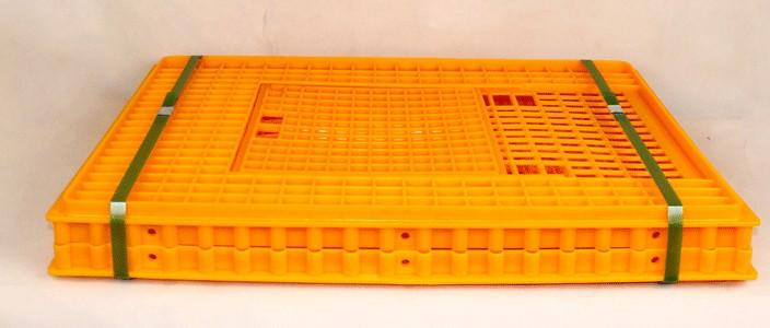 chicken/duck/chick /goose/ transport cage - Poultry plastic chicken/duck/pigeon/dove transport cage /crate/case/box