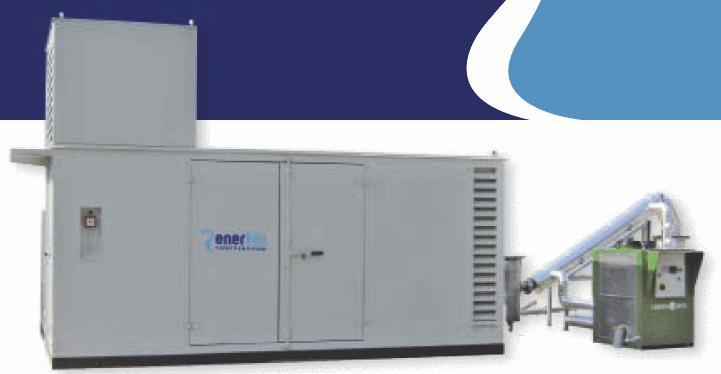 BIOGAS CHP  - from 60 kWe to 1 MWe