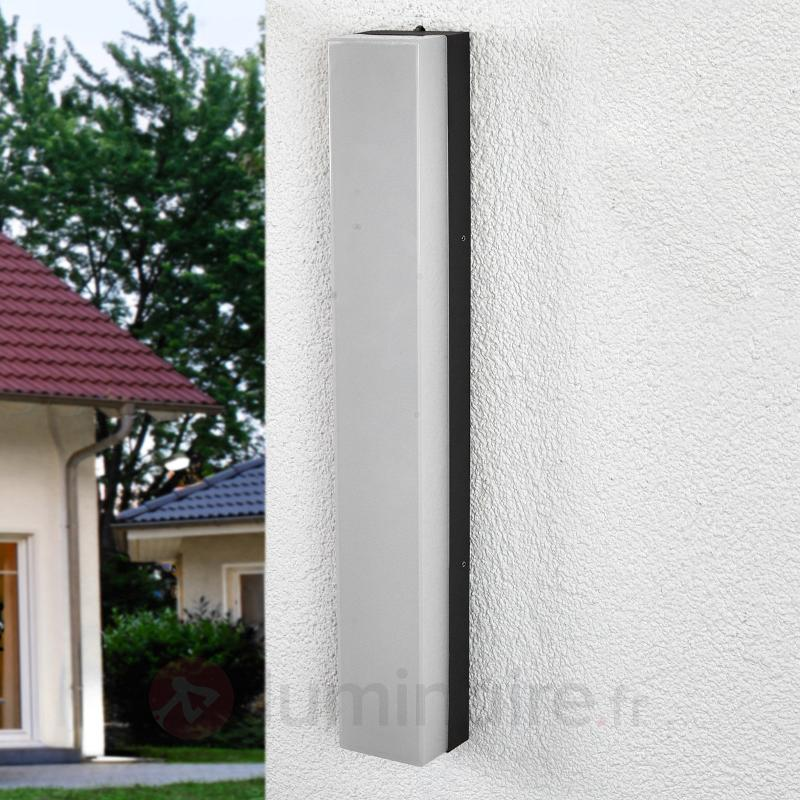 Applique d'extérieur LED puissante Cahita - Appliques d'extérieur LED