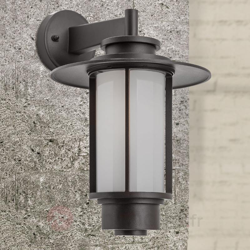 Applique d'extérieur Putri en forme de lanterne - Toutes les appliques d'extérieur