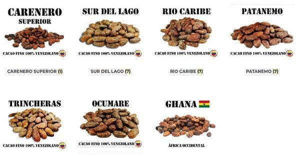 Granos de Cacao - Tienda online Shop - Granos de Cacao - Origenes