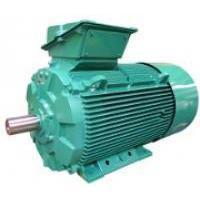Generadores asíncronos de 37 a 1000 kW - LSG - FLSG - PLSG