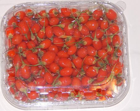 Fresh goji berry from June to October - Fresh-cut goji berries delivered within Europe