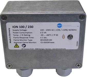 Ionisationsflammenwächter ION 100