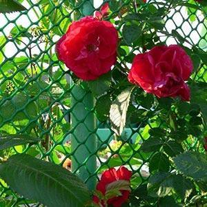 Garden net & fence -