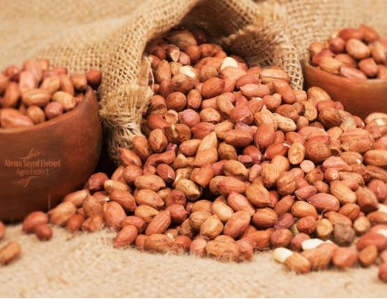 PEANUTS (GROUNDNUT KERNELS) - A popular product which is rich in energy and contain health benefiting nutrient