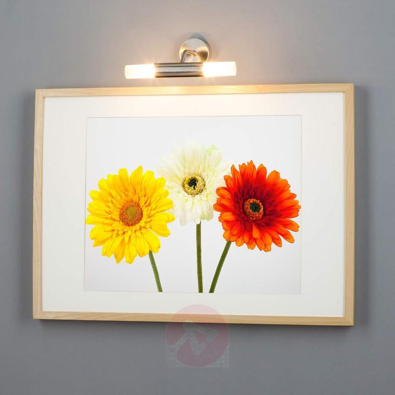 Wall lamp Viviane for mirrors and pictures - Picture Lights