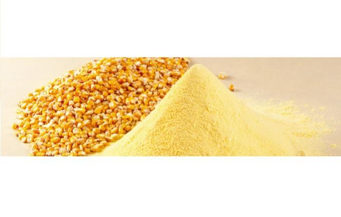 ORGANIC FLOUR - Corn (maize) flour for baby food and diet food