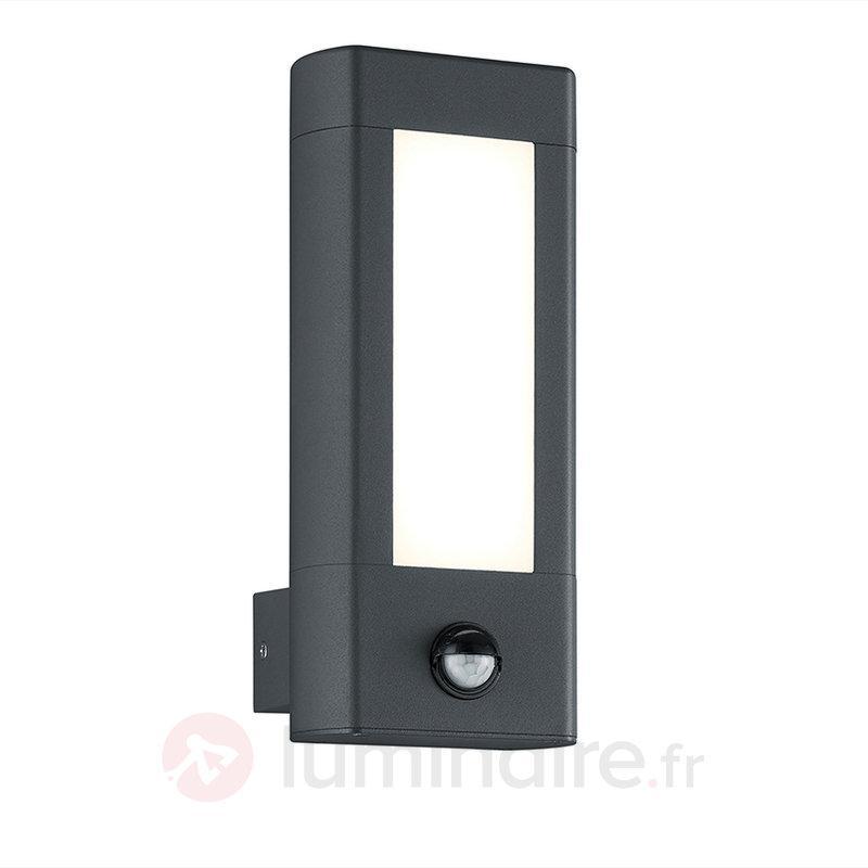 Détecteur de mouvement - app. mur. ext. LED Rhine - Appliques d'extérieur avec détecteur