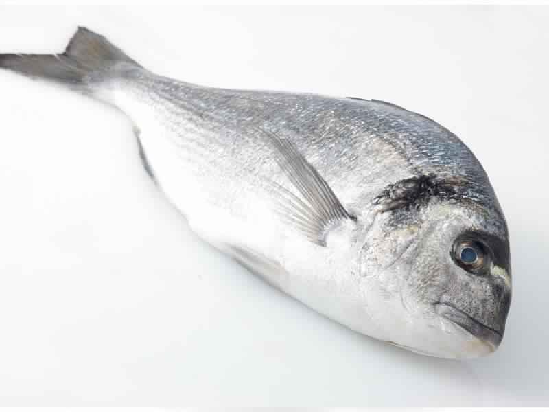 Produit de la mer - Produit de la mer