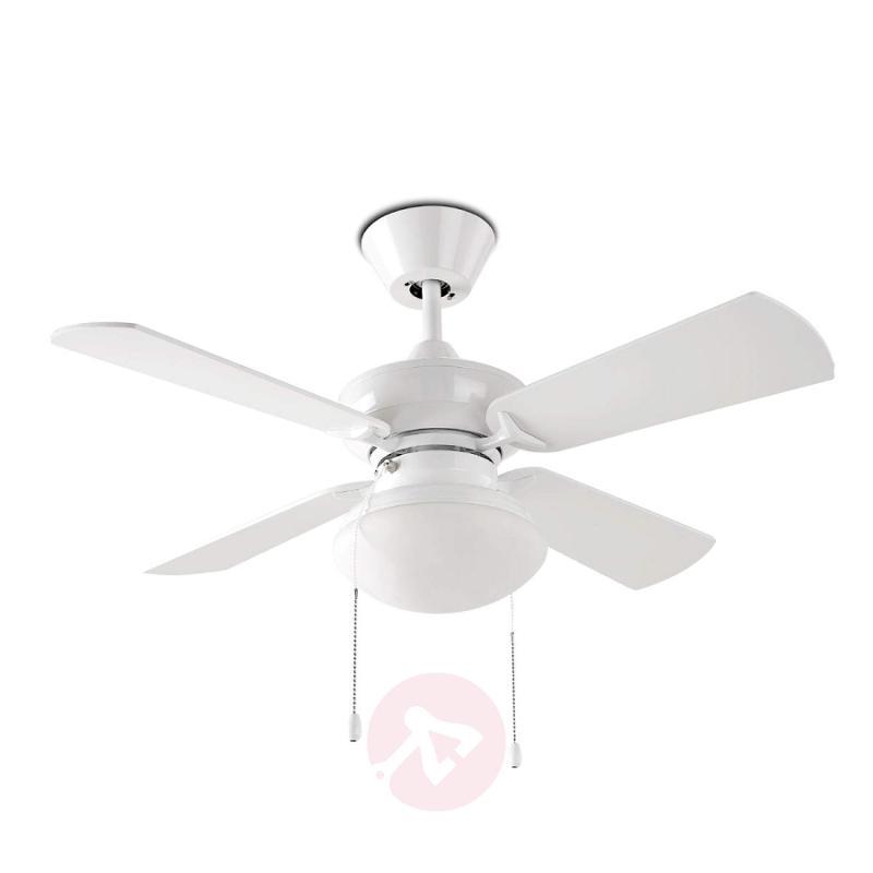 Bouvet - a classic fan with a light - fans