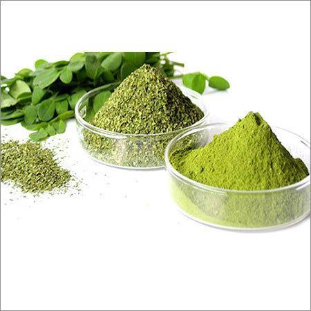 Dried Moringa Leaf Powder