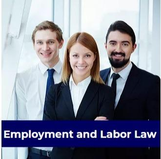Employment and Labor Law - drafting and negotiating employment-related agreements, labour law,