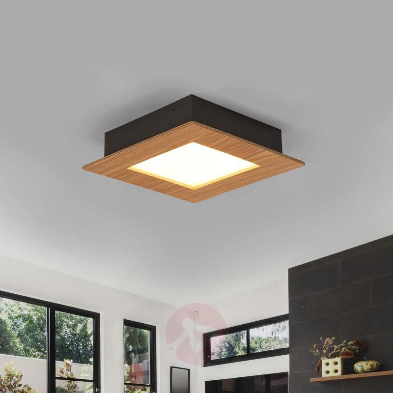 Wood LED ceiling light Deno in natural oak - Ceiling Lights