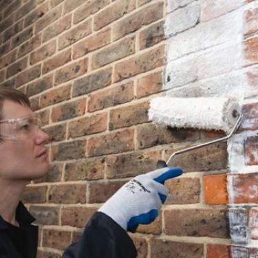 Peinture murale anti-humidité - Hydrofuge Plus 5 L Bac à Peinture en Plastique pour Rouleau